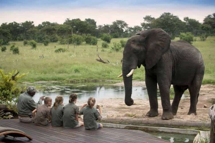 10 Best Safari Tips For Family Safaris with Kids