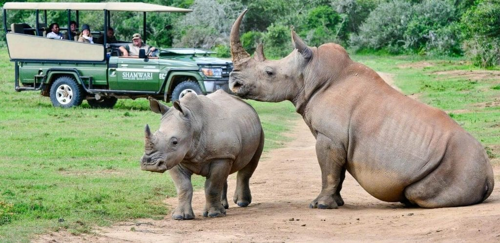 Eastern Cape Private Game Reserves