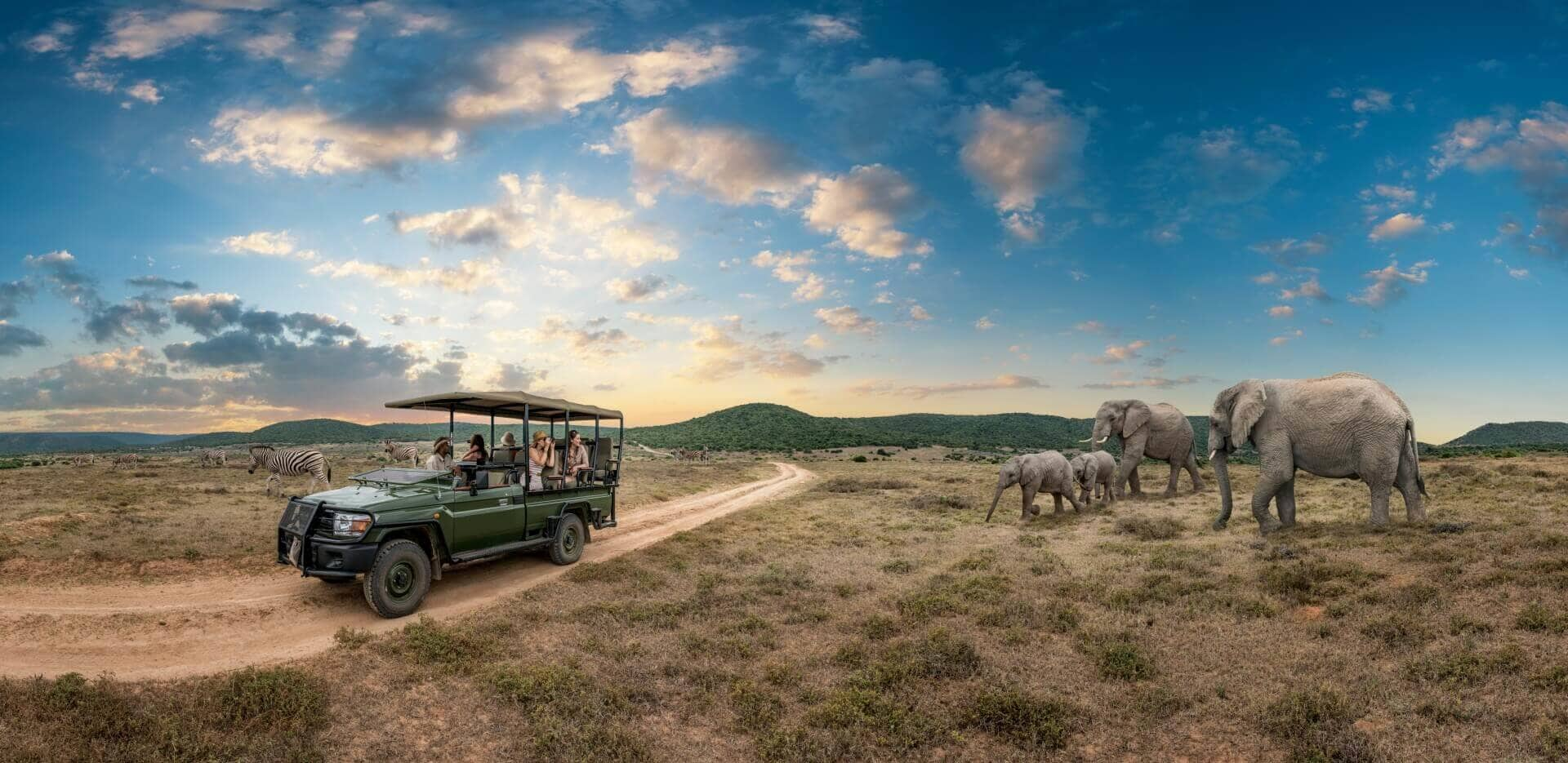 Eastern Cape Private Game Reserves South Africa