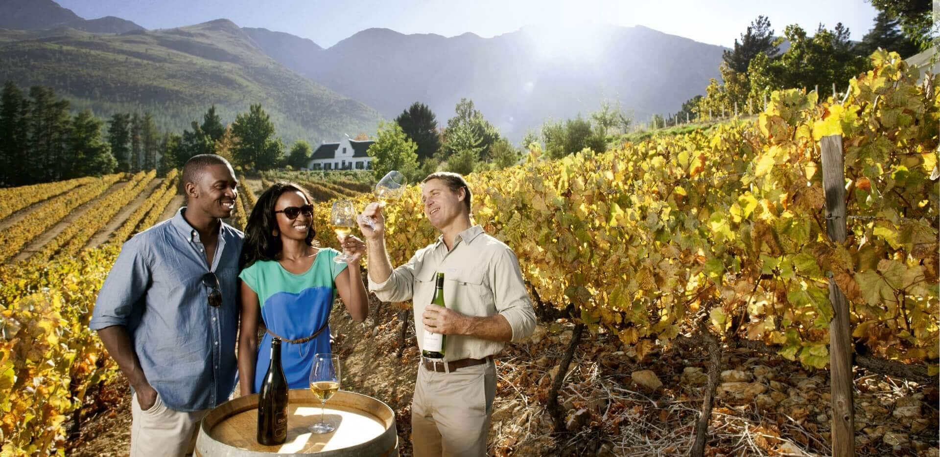 The Winelands South Africa
